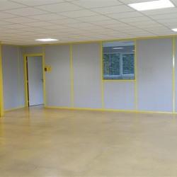 Vente Local d'activités Bailly-Romainvilliers 660 m²
