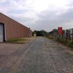 Vente Local d'activités Saint-Léonard 6000 m²