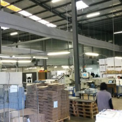 Vente Local d'activités Mauguio 2641 m²