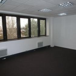 Location Bureau Cesson-Sévigné 290 m²