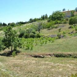 Vente Terrain Vinezac 1710 m²