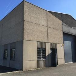 Vente Local d'activités Wasquehal 814 m²