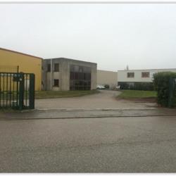 Vente Local d'activités Genas 3000 m²