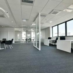 Vente Bureau Châtenay-Malabry 1748 m²