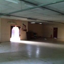 Vente Local d'activités Saint-Jean-de-Bournay 720 m²