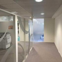 Location Bureau Villeurbanne 1423,1 m²