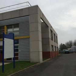 Vente Local d'activités Collégien 819 m²