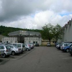 Location Local d'activités Pompey 1805 m²