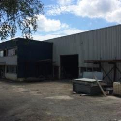 Vente Local d'activités Villebon-sur-Yvette 1383 m²