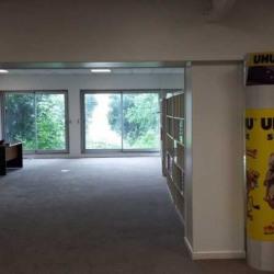 Location Bureau Meudon 175 m²