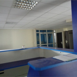 Location Bureau Fort-de-France 291 m²