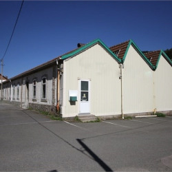 Vente Local commercial La Bresse 253 m²