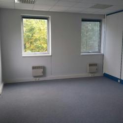 Location Bureau Nozay 250 m²