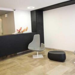 Location Bureau Paris 8ème 537 m²