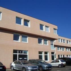 Location Local d'activités Louveciennes 237 m²