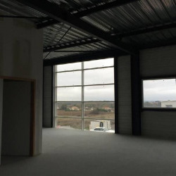 Vente Local commercial Rouffiac-Tolosan 370 m²