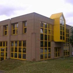 Location Local d'activités Bagneux 434 m²