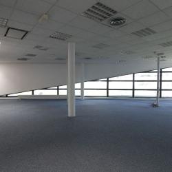 Location Local d'activités Les Echets 627 m²