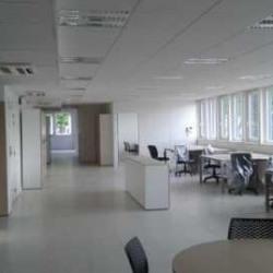 Location Bureau Le Plessis-Robinson 120 m²