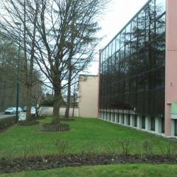 Location Bureau Jouy-en-Josas 115 m²