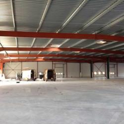 Location Entrepôt Bouloc 1650 m²