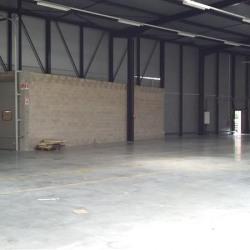 Location Entrepôt Saint-Thibault-des-Vignes 1150 m²