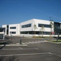 Location Bureau Dijon 503 m²