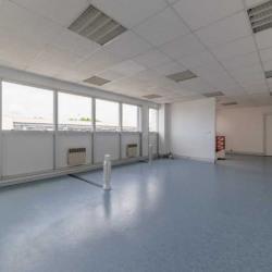 Location Local d'activités Trappes 1146 m²