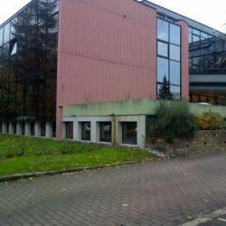 Location Local d'activités Jouy-en-Josas 1066 m²