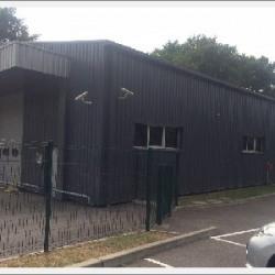 Location Local d'activités Montmerle-sur-Saône 287 m²
