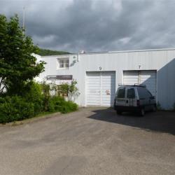 Location Local d'activités Poisat 150 m²