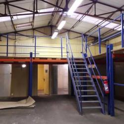 Location Local d'activités Ivry-sur-Seine 350 m²