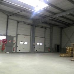 Vente Entrepôt Noé 2000 m²