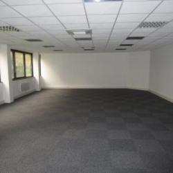 Location Bureau Strasbourg 216 m²