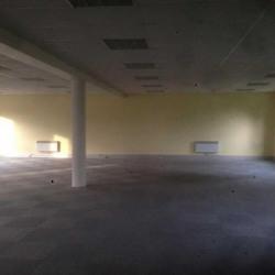 Location Bureau Plailly 600 m²