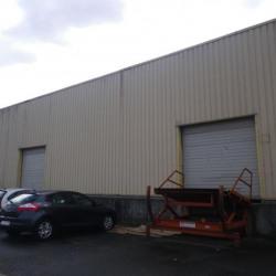Location Local d'activités Saint-Jean-de-la-Ruelle 881 m²