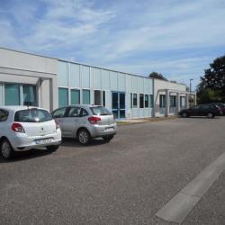 Location Bureau Metz 195 m²