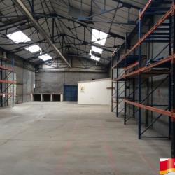 Location Local d'activités Sandouville 324 m²