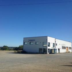 Vente Local d'activités Cesson-Sévigné 800 m²