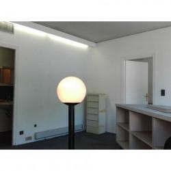 Location Local commercial Évian-les-Bains 42,84 m²