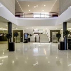 Location Bureau La Plaine Saint Denis 491 m²
