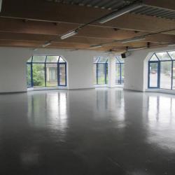Location Local d'activités Croissy-Beaubourg 461 m²