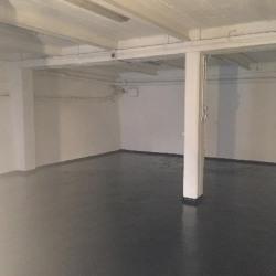 Location Entrepôt Plaisir 100 m²