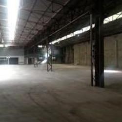 Location Local d'activités / Entrepôt La Trinité