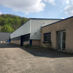 Vente Local d'activités Fleurieu-sur-Saône 520 m²