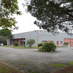 Vente Local commercial Pompertuzat 1000 m²