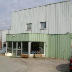 Vente Local d'activités Nevers (58000)