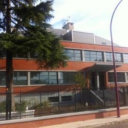 Location Local d'activités Bezons 430 m²