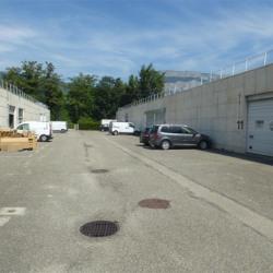 Location Local d'activités Saint-Martin-d'Hères 460 m²