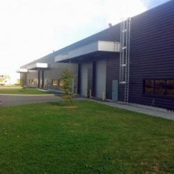 Location Local d'activités Rouvroy 1280 m²